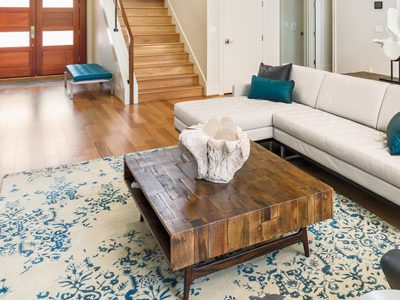 Bamboo-Silk-Rug-Cleaning-3
