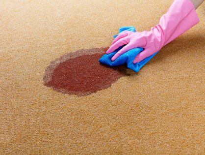 Stain removal for rugs